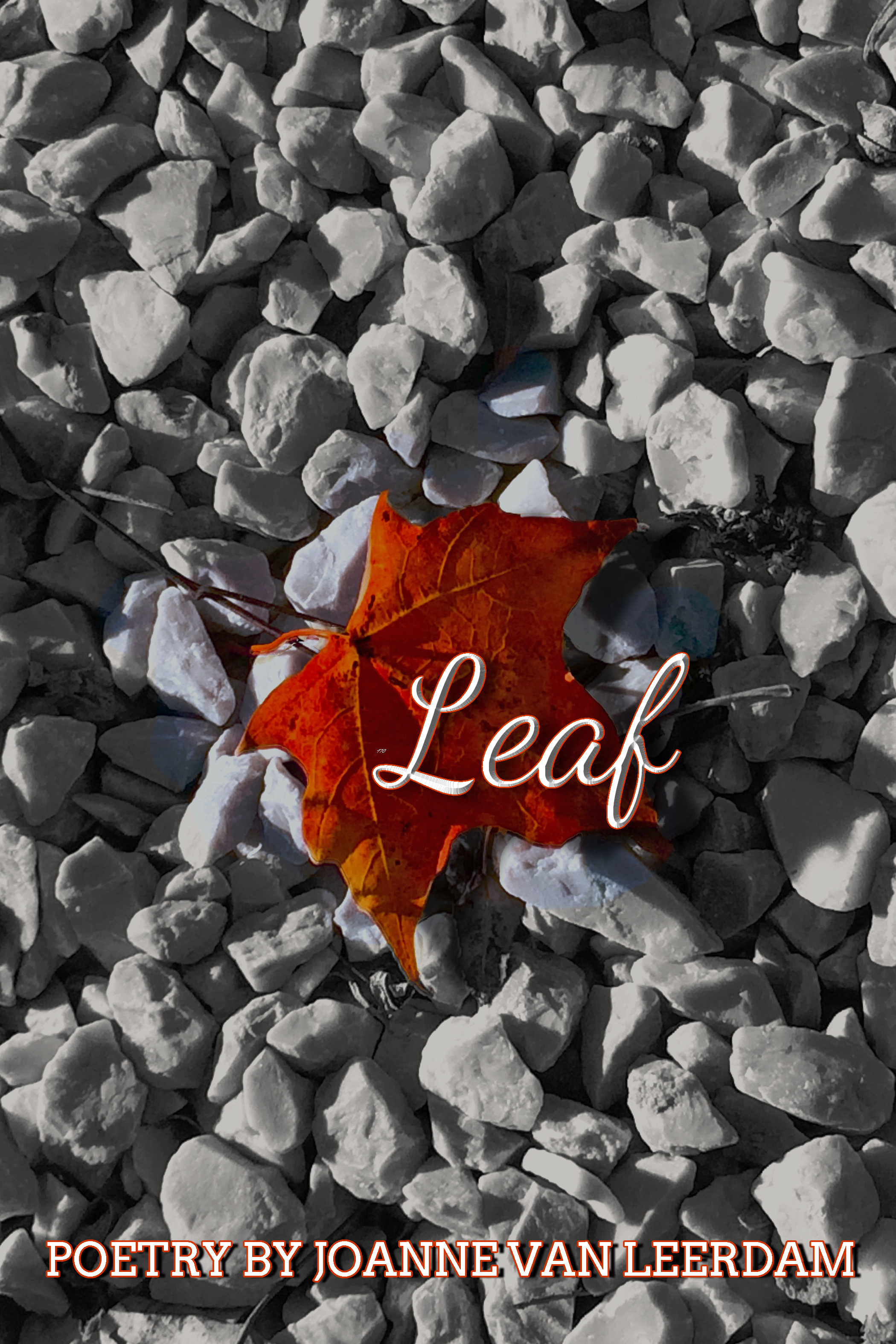 Leaf 2nd Ed eBook Cover 6x9 350ppi