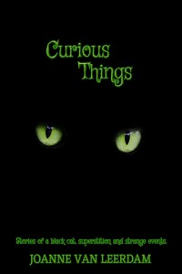 Promo Curious Things Cover