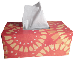 tissues-1000849_960_720.png