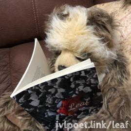 Leaf Simon 2018-04-07 00.08.37