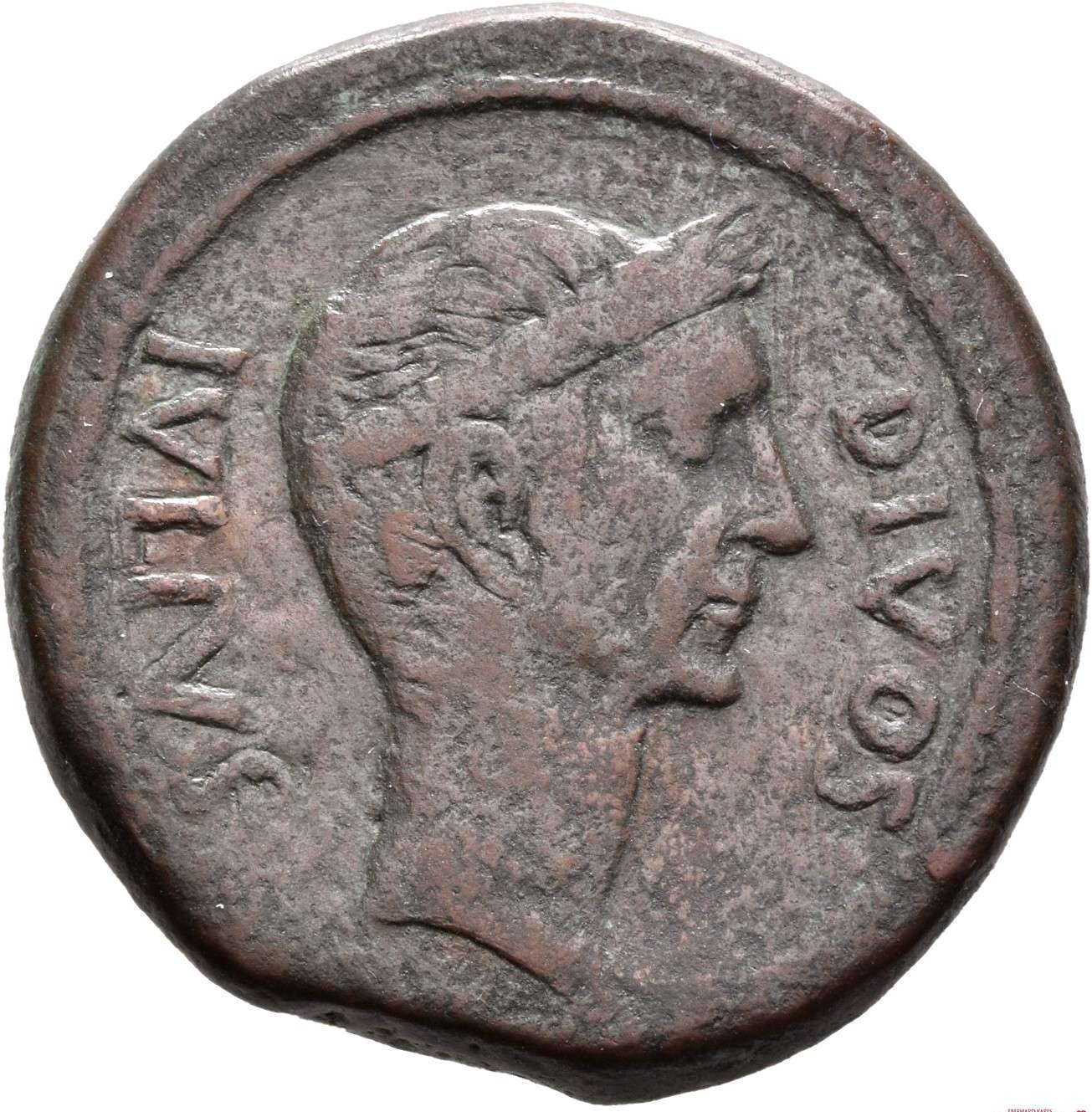 A Roman coin depicting Julius Caesar with the inscription ivlivs divos meaning 'Julius Deus' or Julius the god.